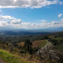 Sentiero 14, vista sulla provincia di Pistoia