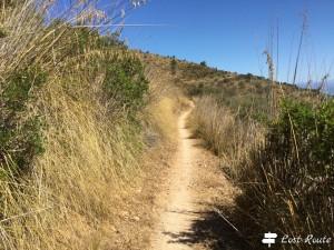 Il sentiero iniziale, Monte Argentario, Grosseto, Toscana