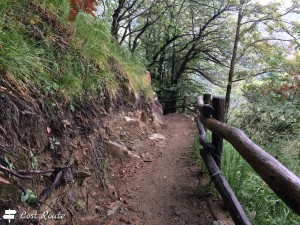 Sentiero per Ponte Tibetano Carasc. Monte Carasso, Ticino, Grand Tour of Switzerland