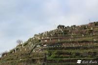 Il Presepe di Manarola, Cinque Terre, Liguria